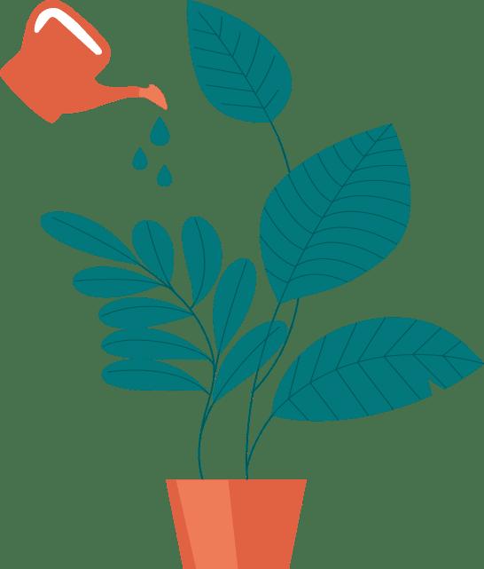 Formation WordPress en ligne